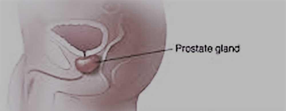 Salud prostática